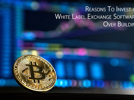 Reasons To Invest in White Label Exchange Software Over Building