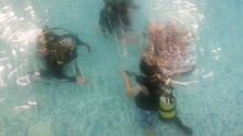 Try Dive November 2013