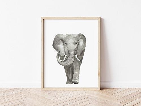 Elephant Print - A4