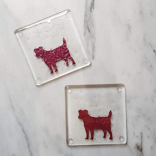 Terrier Coaster