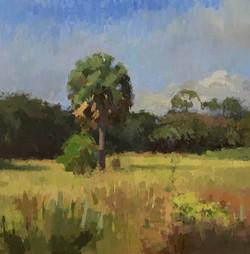 Poyhonen, Path through the tall grass 36