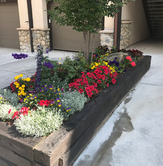 Landscaping 12