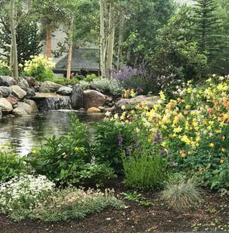 Thetford Landscape Maintenance