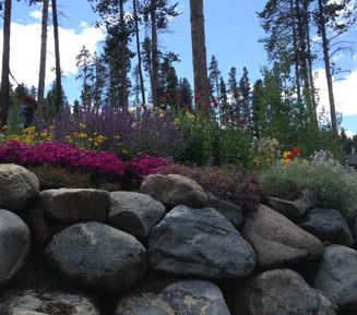 Summit County Stone Walls
