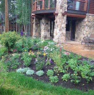 Landscape Maintenance 29