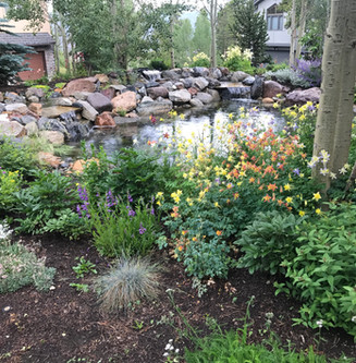 Maintenance of Landscaping in Breck