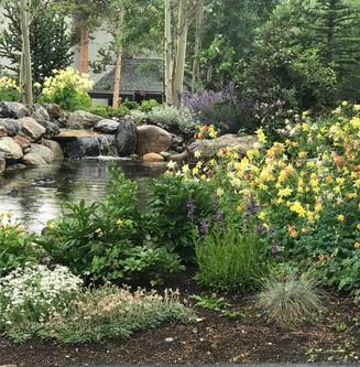Landscape Maintenance Breckenridge