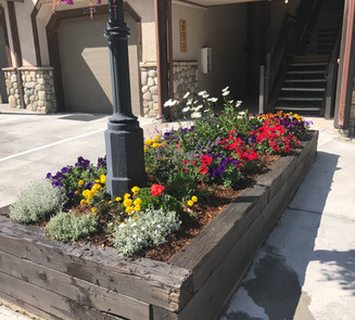 Flower Boxes & Containers 9