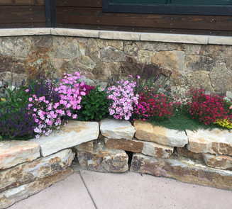 Flower Boxes & Containers 3