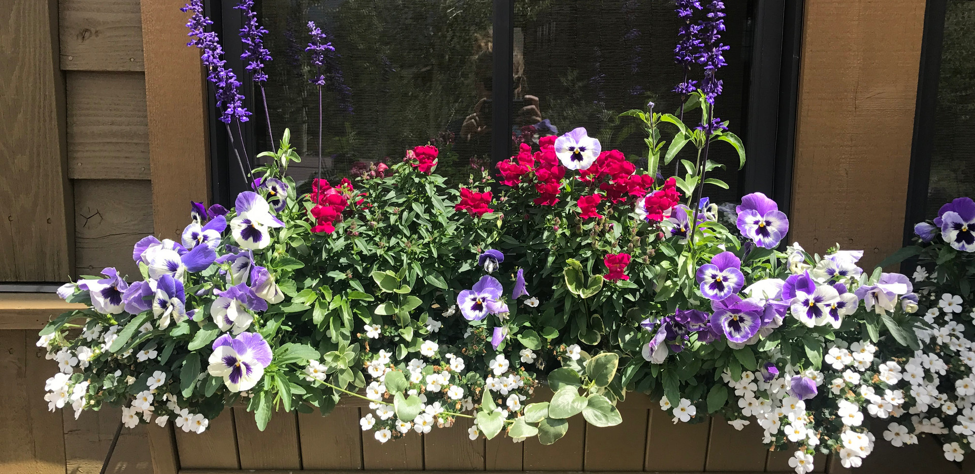 Flower Boxes & Containers 15
