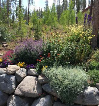 Colorado Irrigation Maintenance