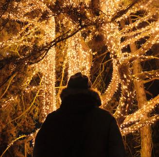 Breckenridge Holiday Lights