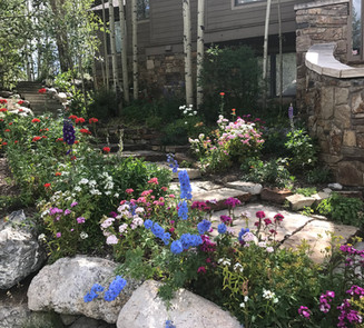 Flower Boxes & Containers 13