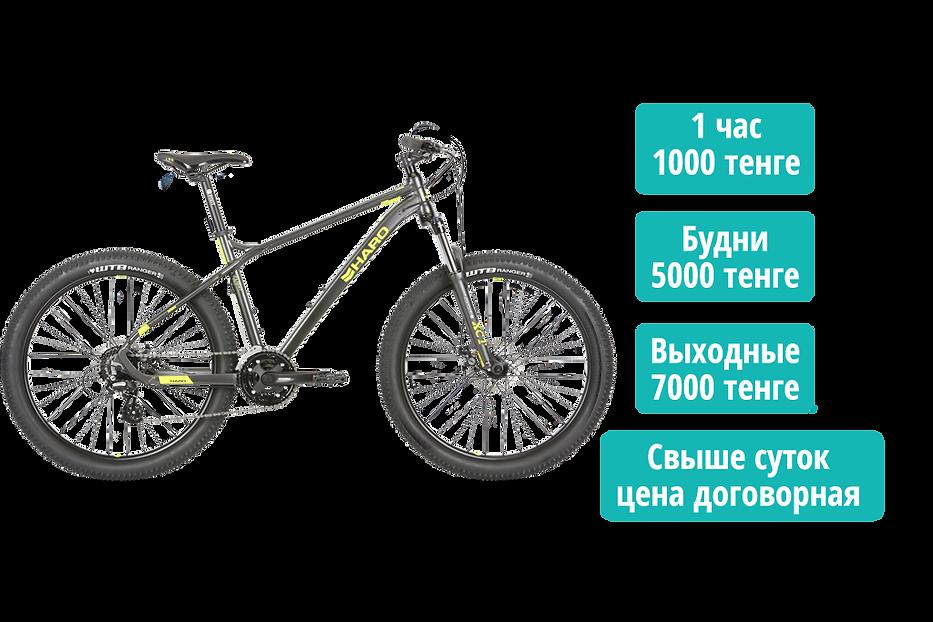 Прокат Велосипедов в Алматы.png