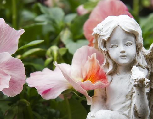 מדיטציה להבנת מהות חייכם וקבלת תשובות ממלאכים