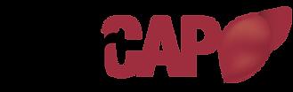 LiverCap-logo.png