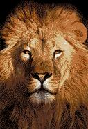 Mosaic Art Lion