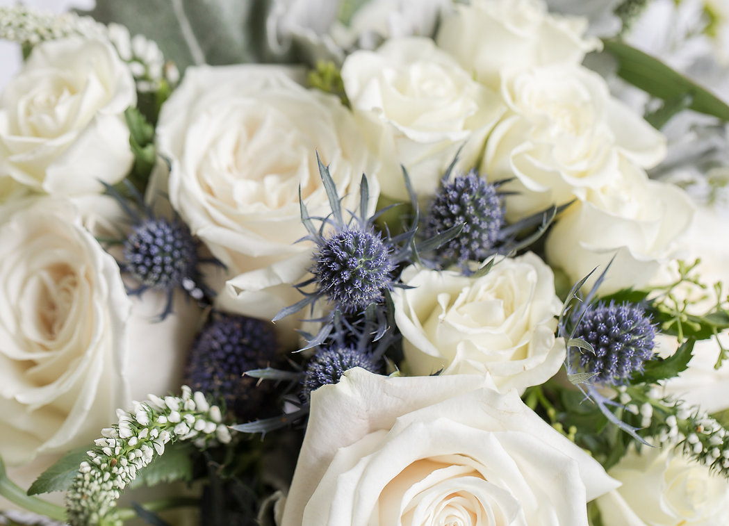 Selina + Conor Wedding Blog-7.jpg