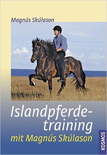 Islandpferdetraining