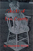 Ghost of Erie County Book.jpg