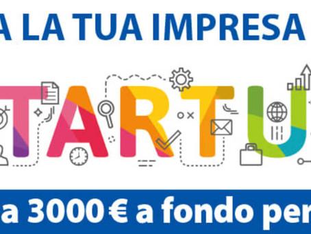 Il contributo della CCIAA di Roma a favore degli aspiranti imprenditori