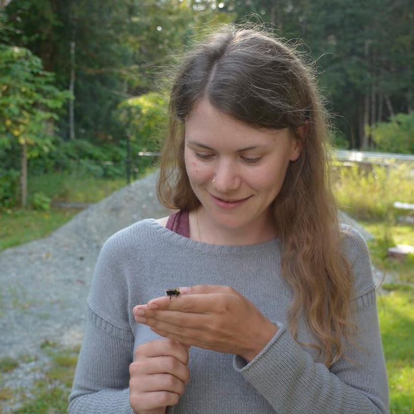 Building Habitat for Pollinators