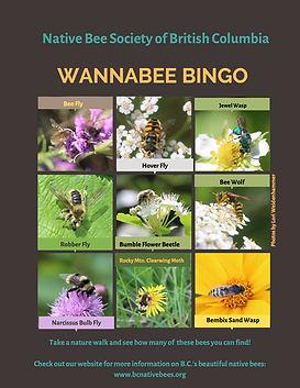 Wannabee-bingo.jpg