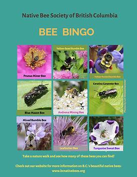 Bee-bingo.jpg
