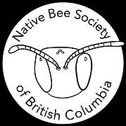 NBSBC Logo-02.jpg