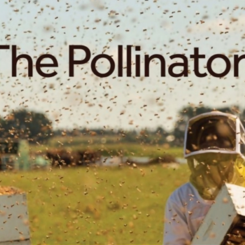 Pollinator Event with Port Moody Naturally