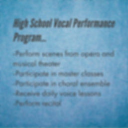 High School VP program features.jpg