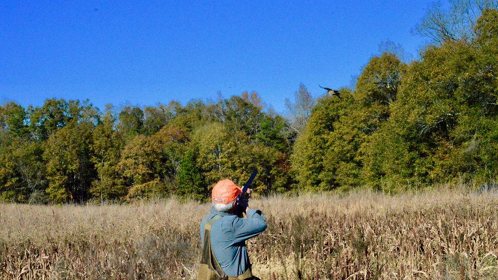 10 Pheasant Hunt