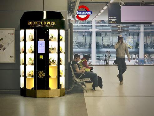 Rockflower Edit 1.jpeg
