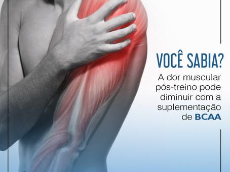 A dor muscular pós-treino pode ser diminuída com BCAA.