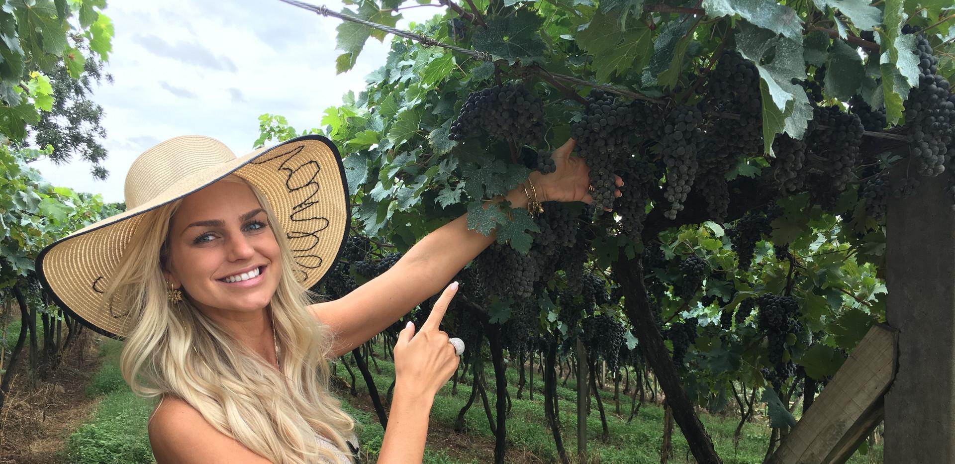 Pesquisa para dieta do Vinho & Champagne