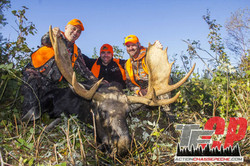 Moose Hunts 2015