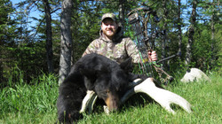Bear Hunts 2016