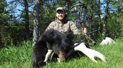 Bear Hunts 2016