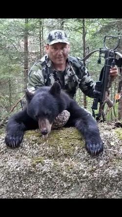 Bear Hunts 2018