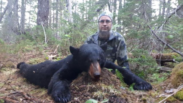 Bear Hunts 2018