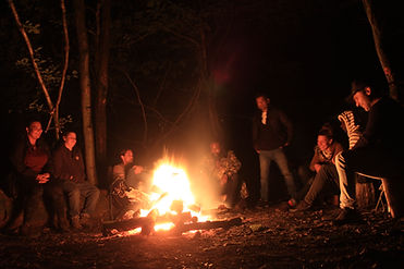 Forest Healing Camp at night.JPG