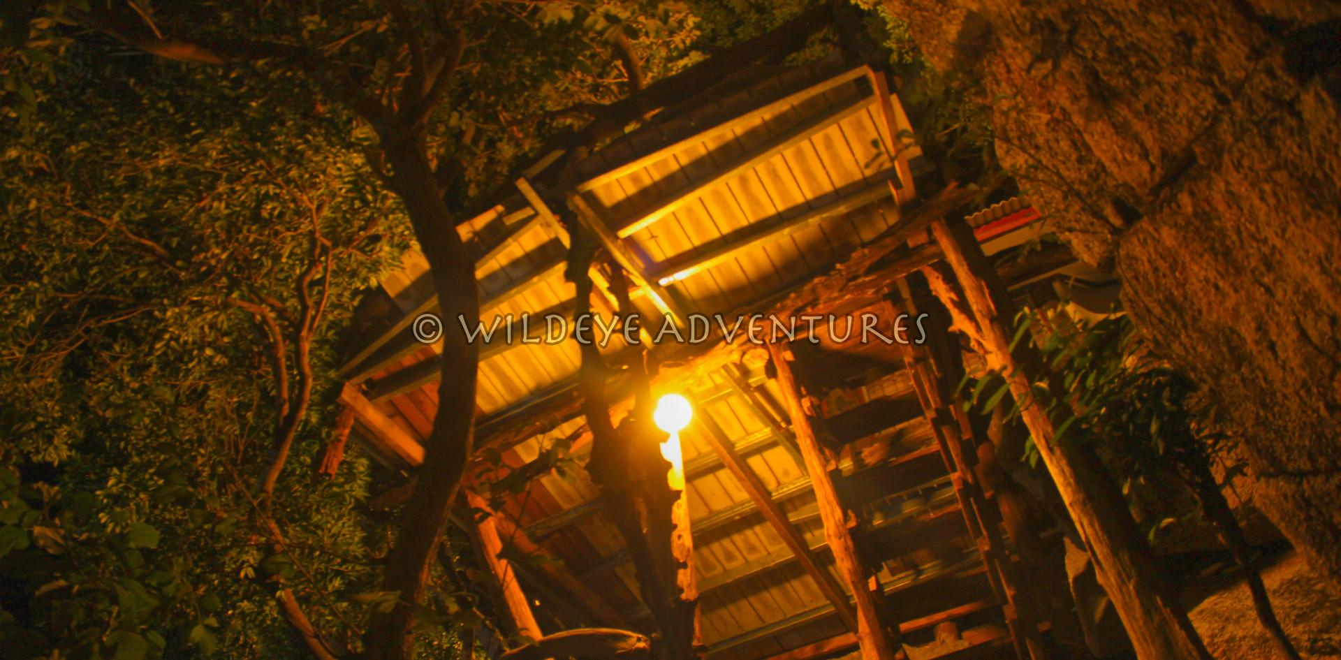 TreehouseKohPhangan44_logo.jpg
