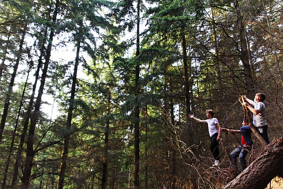 Kids in woods.jpg