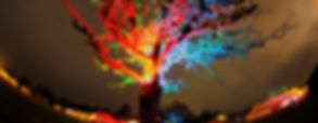 TreeHDRCebtreLogo.jpg