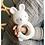 Thumbnail: Beissring Hase