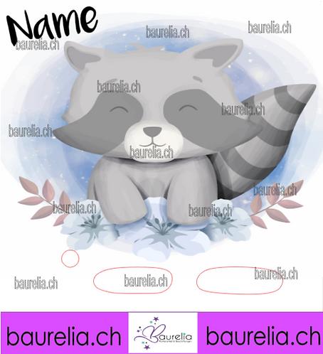 Schutzfolie Toniebox Waschbär 4