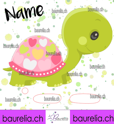 Schutzfolie Toniebox Schildkröte 4