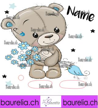 Schutzfolie Toniebox Bär 13