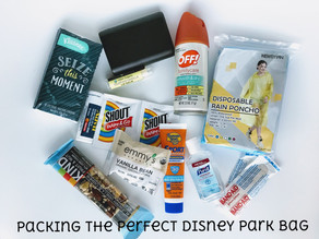 Packing the Perfect Disney Park Bag