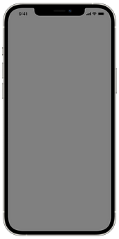 iPhone 12 Pro Max - Silver - Vertical.pn
